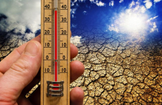 European harvests affected by heat: damage is not critical